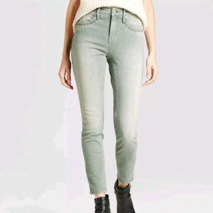 NWT Embroidered High Rise Skinny Jeans